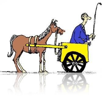 carroça e bois